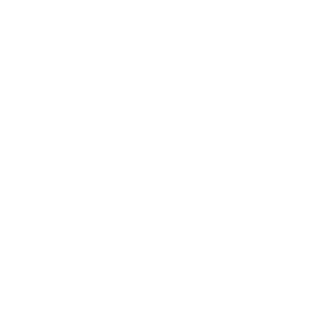 Wyatt Homes Logo